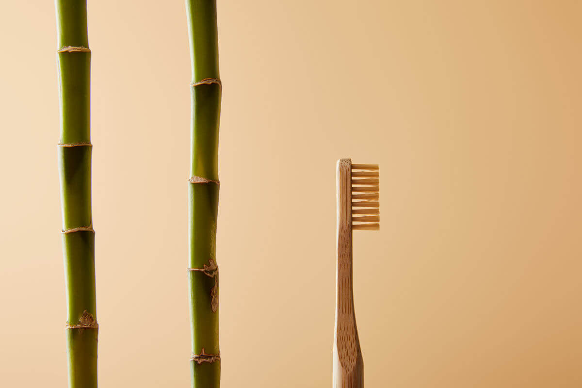 Di quali materiali sono fatti esattamente gli spazzolini di bambù