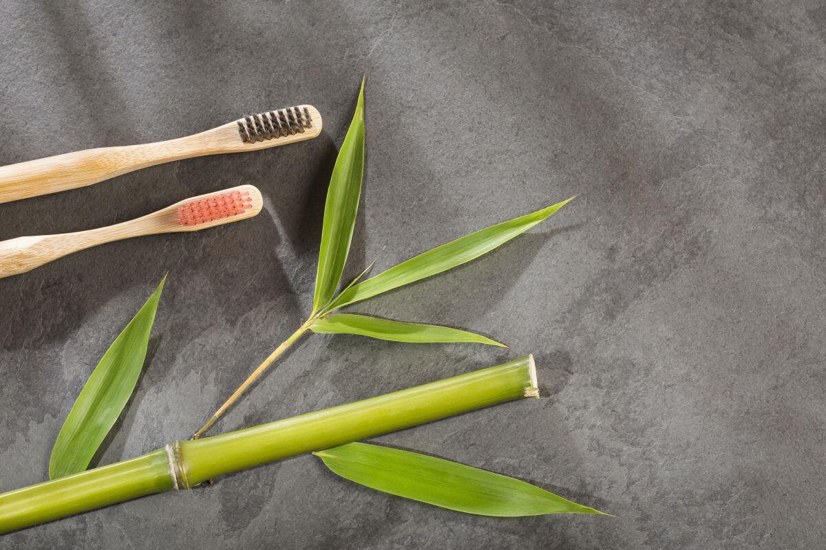 Le domande più frequenti sugli spazzolini di bambù
